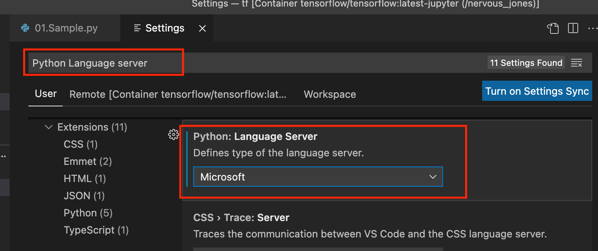 vscode_pythob_language_server