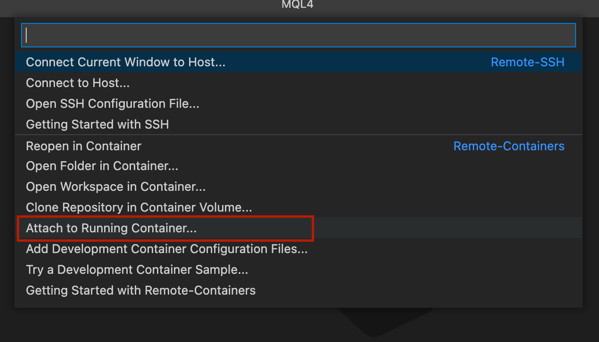 vscode_remote_container_extension_attach_container