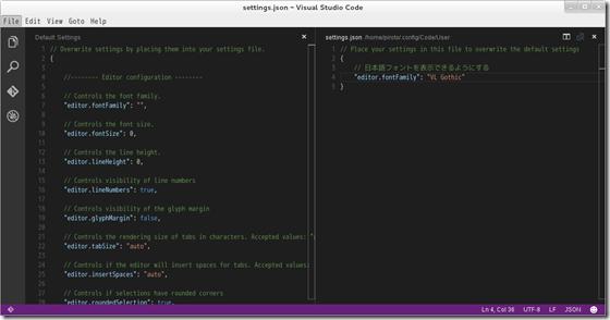 vs_code_japanese_success
